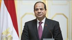 49 توكيلا لـ«السيسي» في شمال سيناء