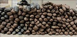 ضبط أكثر من 62 كيلو بانجو وحشيش في 4 محافظات