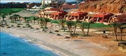 """20 يناير.. """"مرسى علم"""" تستقبل أكبر منظم رحلات تشيكية"""