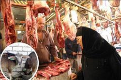 «إحياء البتلو».. اللحوم الحمراء تعود لموائد المصريين
