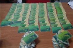 اليوم.. بدء تسليم 1700 بطاقة تموينية بالمنظومة الجديدة
