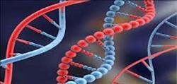 باحث يطالب تحليل الجينات الوراثية للمصريين لاكتشاف الأجناس غير المصرية