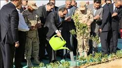 بعد 4 سنوات على حكم «السيسي»..طفرة في القطاع الزراعي وخدمة الفلاح