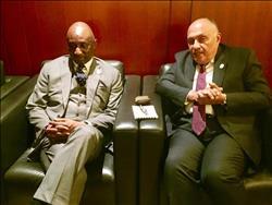 «شكري» يؤكد على دعم مصر لتحقيق السلام والاستقرار في مالي
