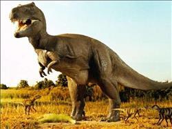 جامعة المنصورة: الديناصور المصري يشبه نظيره المتواجد بأوروبا.. «فيديو»