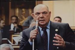 برلماني: الرئيس السيسي حذر مثيري الفوضى من التلاعب بأمن مصر