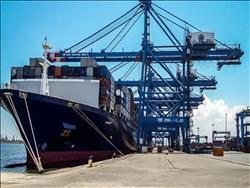 تداول 31 سفينة عملاقة في موانئ بورسعيد