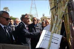 وزير التموين: الرئيس السيسي وجه بالنهوض بصناعة السكر