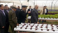 خاص| بالصور .. مدير السجون يفتتح 1700 فدان للمزارع النموذجية بوادي النطرون