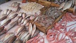 استقرار أسعار الأسماك في سوق العبور