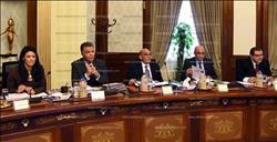 الحكومة توافق على خطة استصلاح وزراعة 20 ألف فدان غرب المنيا