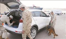 خبراء الأمن: الضربات الاستباقية تستهدف القضاء على مخططات إرهابية لزعزعة الأمن