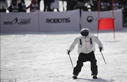 فيديو وصور.. سباق بين روبوتات على الجليد في دورة الألعاب الأولمبية الشتوية