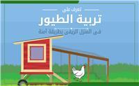 إنفوجراف | تعرف على تربية الطيور فى المنزل الريفى بطريقة آمنة