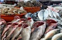 تعرف على.. أسعار الأسماك في سوق العبور «16 فبراير»