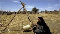 «نداء للتنمية»: ريادة الأعمال الحل الأمثل لمحاربة البطالة
