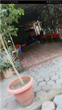 سكان بلوك ١٧٨ الزاوية الحمراء يناشدون المحافظ.. «الحديقة أصبحت مقهى»