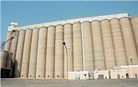 المصيلحي: السعة التخزينية للصوامع بلغت 3 مليون طن ونهدف لزيادتها