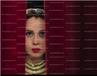 الثلاثاء.. انطلاق أولى ليالي مهرجان المرأة السينمائي