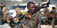 مسلح يقتل مدنيين اثنين في الصومال