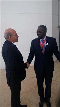«البنا»: مصر حريصة على التعاون مع أفريقيا لتحقيق الأمن الغذائى