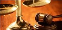 تأجيل محاكمة 32 متهما بخلية «ميكروباص حلوان» لـ8 أبريل