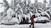 «وحش الشرق» يهاجم أوروبا.. ودرجات الحرارة في ألمانيا 27 تحت الصفر |صور
