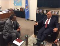 «شكري» يلتقي مدير منظمة الصحة العالمية بـ «جنيف»