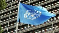 الأمم المتحدة تنشأ خطا ساخنا للإبلاغ عن حوادث التحرش الجنسي بالمنظمة