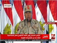 فيديو..الوزير: المصريون سطروا إنجازا عظيما بحفر قناة السويس الجديدة خلال عام واحد