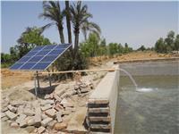 فيديو.. مزرعة سمكية تعمل بالطاقة الشمسية في مصر