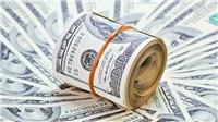 سعر الدولار يواصل تراجعه في البنوك المصرية