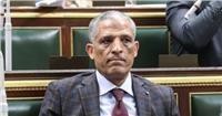 «برلماني» ساخرًا: يمكن اعتبار ضحايا الكلاب الضالة «شهداء»