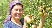 «الأمم المتحدة» تحتفي بالمرأة الريفية.. غدًا «الخميس»