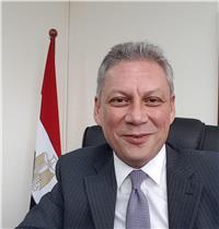 سفارة مصر بـسنغافورة: نستعد للانتخابات ونتوقع مشاركة كبيرة