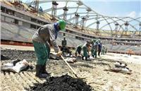 «ميثاق الأمم المتحدة لحقوق الإنسان» منتهكٌ من أجل ملاعب مونديال قطر
