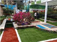 جمال عبد الحميد يشارك بمعرض زهور حديقة الأورمان..«صور»