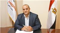 برلماني: مصريو الخارج يضربون أروع الأمثلة في دعم وطنهم