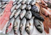 انخفاض «أسعار الأسماك» بسوق العبور