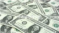 تعرف على سعر الدولار اليوم