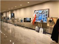 بالصور  مصر تشارك في معرض لوحات للمرأة بالأمم المتحدة