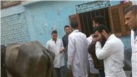 جامعة السادات تنظم قافلة بيطرية لقرية صنصفط بمنوف