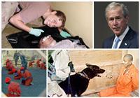 «سجن أبو غريب» .. جوانتنامو «بوش» على أرض العراق