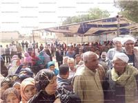 مصر تنتخب| انتظام العملية الانتخابية بالوادي الجديد