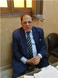مصر تنتخب| رئيس اللجنة العامة بالمرج: الشباب تصدروا المشهد