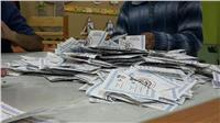 31.5% نسبة المشاركة بالانتخابات في التجمع الخامس