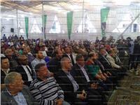 بدء أعمال الفرز في انتخابات رئاسة الوفد