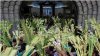 فيديو.. كنائس مصر تقيم قداس «أحد السعف»