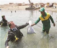 «نظافة تحت الماء» في مرسى علم