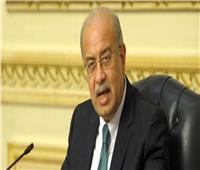 بيان مصري أوروبي مشترك: نتعاون في 5 مجالات للطاقة